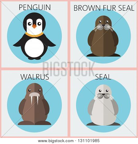 Abstract illustration with colored sea animals set in round frames a penguin walrus brown fur walrus and seal over a white background. Digital vector image.