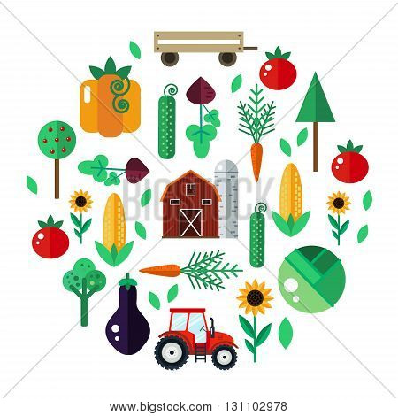 Farm with tractor, vegetables, barn, trees, sunflowers. Farm vector illustration. Farm concept. Farm set - carrot, pumpkin, beet, cabbage, tomato, eggplant, cucumber, corn. Farm vector set in flat style.