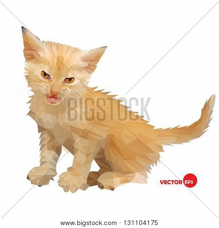 Cat vector silhouette on the white background isolated made in low poly style. Little baby cat with an angry look little lion. Design cat illustration for book cartoon card shirts. Love kitten.