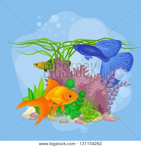 Underwater vector world background with fish, seaweed and bubbles, illustration