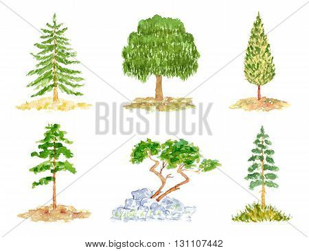 Set of Trees Watercolor Hand Drawn and Painted Isolated on White