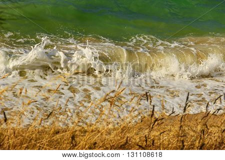 SUMMERTIME.Colors of Apulia: Wave breaking on the beach.Bisceglie (ITALY).