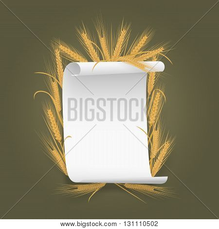 Banner Label template paper sheet with wheat spikelets. Vector illustration