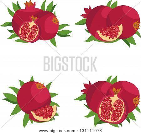 Pomegranate. Set of Pomegranate. Vector illustration on a transparent background