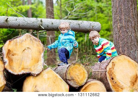 Two little cute smiling kid boys in bright jackets playing together in a forest on a rainy day. Friendship between siblings. Happy family, carefree childhood, brother love concept