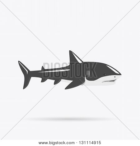 Marine predator shark design flat. Dangerous predator shark with fins and tail and sharp teeth. Aggressive fish creation of nature in black color living in the ocean or the sea. Vector illustration