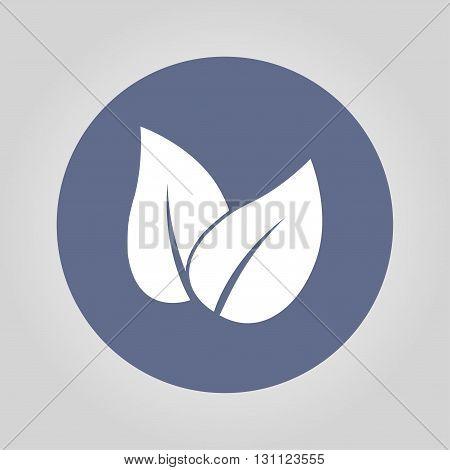 Leaf icon design. Flat design vector style.