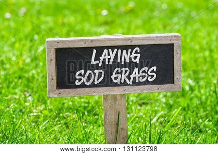 Sign on a green lawn - Laying sod grass