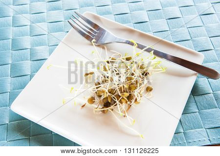 White plate with a serving of lentil sprouts on a blue mat
