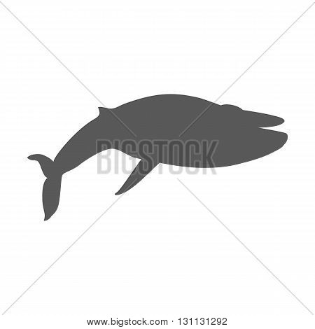 Black monochrome whale isolated on white background. Largest animal in world. Huge creating floating in the ocean or the sea. Big mammal whale with tail and fin living in water. Vector illustration
