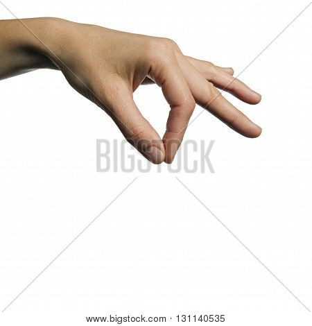 female hand holding your object on isolated white background