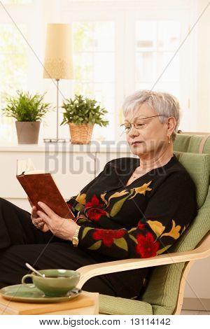 Weibliche Rentner mit Brille zu Hause im Sessel sitzen lesen.?
