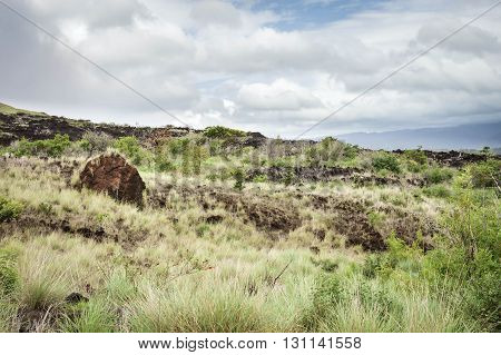 Landscape of the reddish lava field covered by rich vegetation by the foot of Masaya volcano in Nicaragua