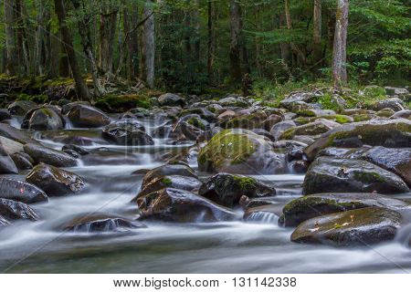 A creek in the early morning hours. Taken in the Smoky Mountains.