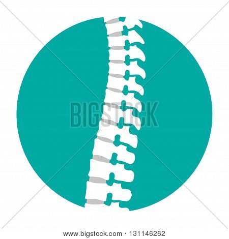 Flat spine icon for orthopedic therapy diagnostic center.