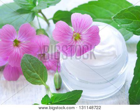 natural facial cosmetics