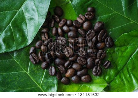 Fresh roasted coffee beans in selective focus