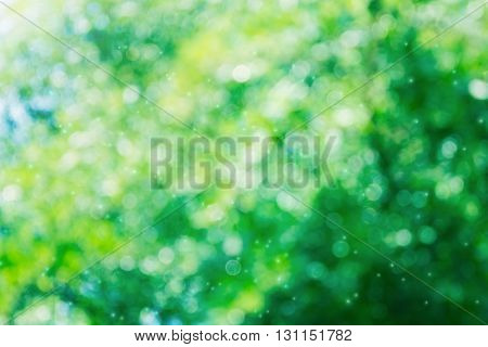 Glow Sweet Green And Blue Tone Bokeh In Fantasy Mood Abstarct Background
