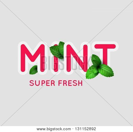 Leaf Of Fresh Mint. Fresh Mint Banner Design. Bunch Of Mint Vector Object. Green Mint With Lettering