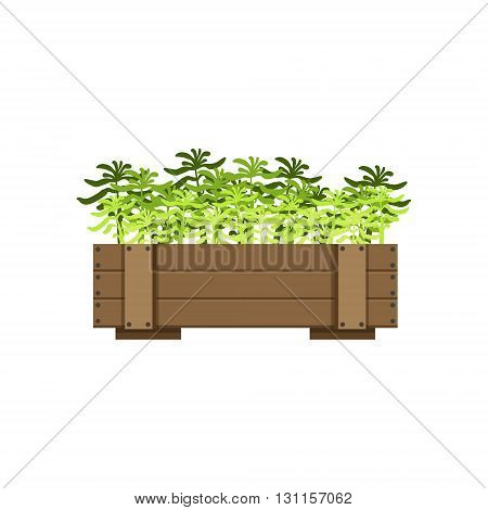 Plants In A Wooden Crate Bright Color Simple Style Flat Vector Illustrations On White Background