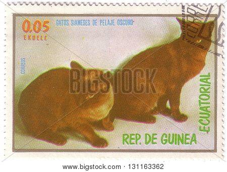 Equatorial Guinea - Circa 1974: Stamp Printed By Equatorial Guinea, Shows Two Cats, Circa 1974