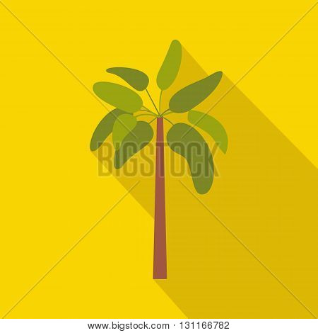 Palm plant tree icon in flat style on a yellow background