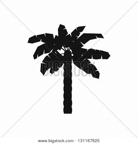 One palm tree icon in simple style on a white background