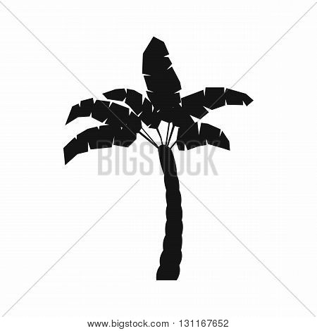 Palm tree icon in simple style on a white background