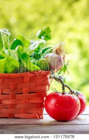 Vegetables Against Green Background