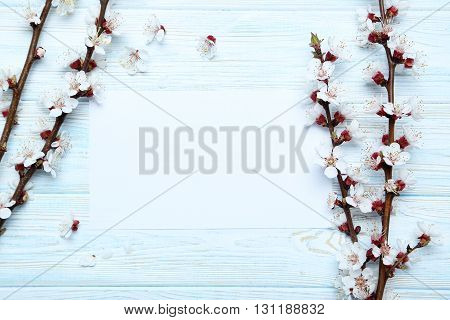 Tree Branches With Flowers On Blue Wooden Table