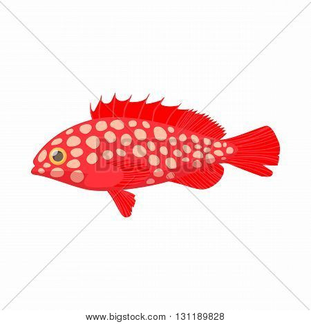 Hemichromis fish icon in cartoon style isolated on white background. Sea and ocean symbol