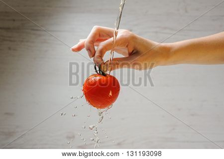 Woman's hand holds fresh tomato on light wood background. Adult young woman washes a tomato. Fresh red Tomato in splash of water. Fresh tomato under running tap with water drops.