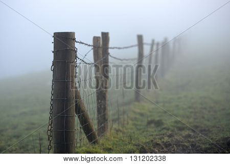 Misty barb wire stock fences on south downs
