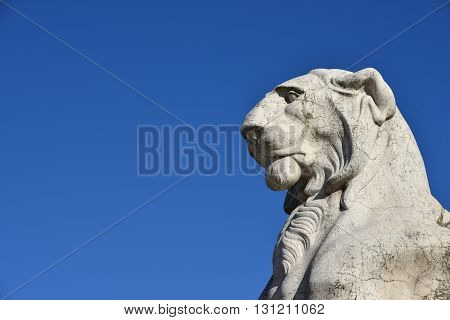 Majestic Lion. Marble statue of a lion from Vittoriano monument a huge building in the center of Rome designed by architect Giuseppe Sacconi in 1883