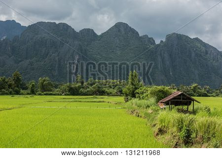 View of the karst mountain landscape and lush greeneries in Vang Vieng. Vang Vieng is not only beautiful in landscape, but is also one of the hottest partying destinations.