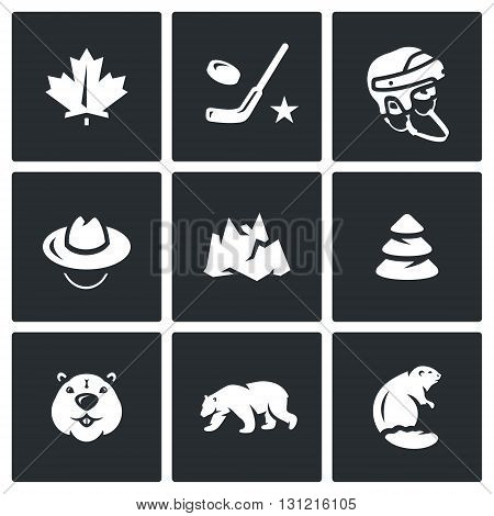 Nature, sport and animals of northern Canadian country.