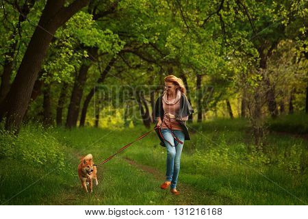 Girl and dog Shiba Inu run in the Spring Park. Walking with a pet. Pedigree dog. Walking dogs.