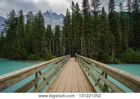 Teenage Girl on Foot Bridge along the Berg Lake Trail, British Columbia