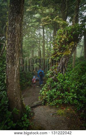 Father and Son on the Juan de Fuca Trail Botanical Beach Port Renfrew BC