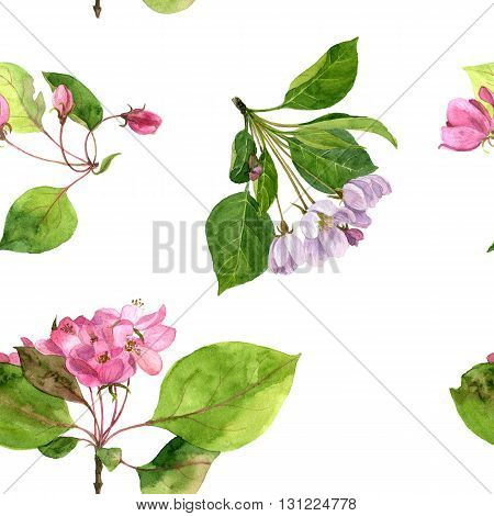 seamless pattern with watercolor pink apple tree flowers, ornament with apple tree blossoms, buds and leaves, hand drawn artistic background