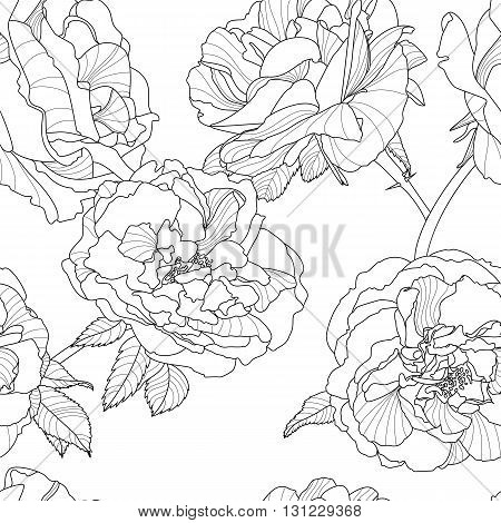 Vector Floral Seamless Pattern. Black And White Background With Outline Hand Drawn Rose Flowers. Des