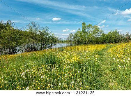 Spring Meadow Path Around Pond Under Blue Sky