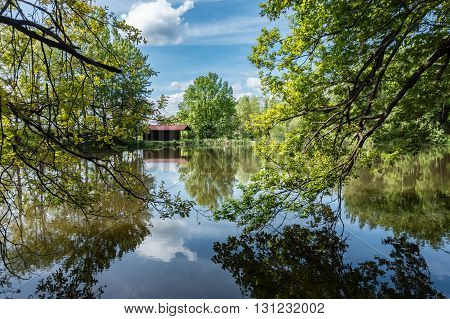 Amazing Pond In Summer Forest And Weekend House