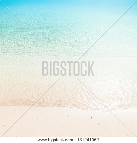 tropical paradise beach / Sunny day sea paradise / Sea paradise / Paradise postcard