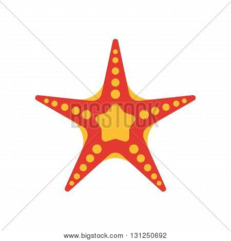 Starfish Vector Illustration