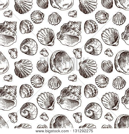 Hand drawn sea shell. Set of vector sketches shells. Shell illustration for your design. Seamless pattern sea shell.