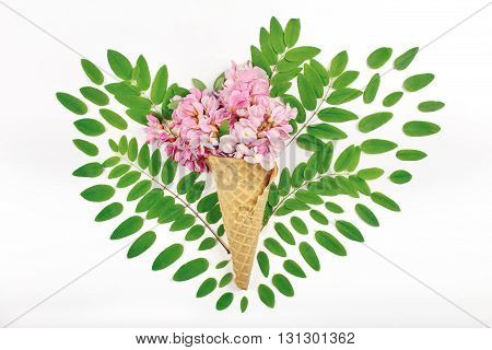 Cone with acacia flowers in acacia leaves in the shape of heart on white background. Top view.