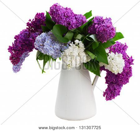 Posy of fresh lilac flowers in pot isolated on white background