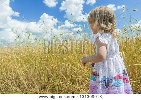 Back view portrait of two years old blonde girl is looking at country farm field
