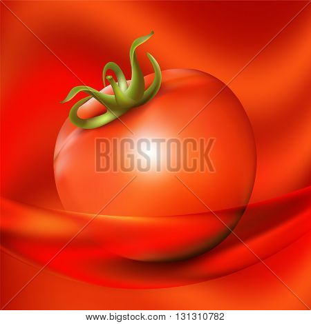 Red fresh tomato on abstract red background. Vector illustration.